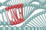 cancer-oncogene-206x136