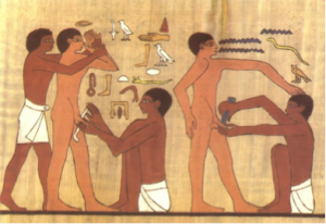 circ egypt